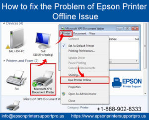Epson Printer Offline Issue